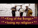 King of the Bongo • Losing My Religion ºº REM / MANU CHAO cover (acoustic)