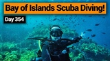 Scuba Diving in the Bay of Islands New Zealand's Biggest Gap Year Backpacker Guide New Zealand