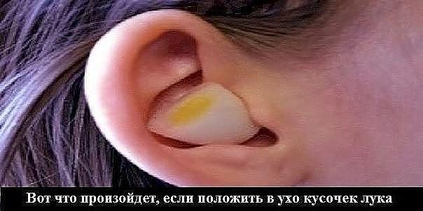 Вот что произойдет, если положить в ухо кусочек лука! После этой статьи ты будешь засыпать с луком в ухe .