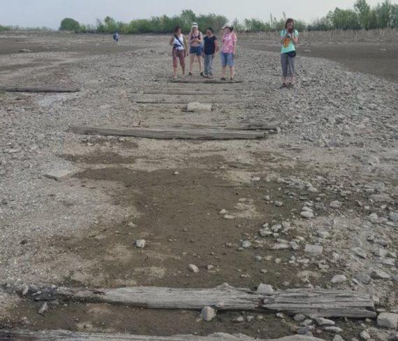 Волга обмелела до древней булыжной мостовой