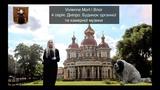 Vivienne Mort Влог 4 Серя Днпро. Будинок органно музики.