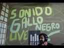 Sonido Gallo Negro Full Performance Live on KEXP