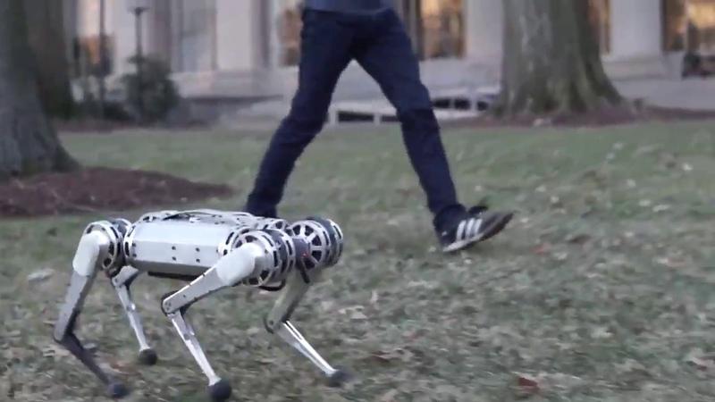 MIT Mini Cheetah Boston Dynamics