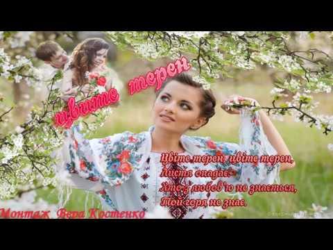 Красивая лирическая песня ЦВИТЕ ТЕРЕН