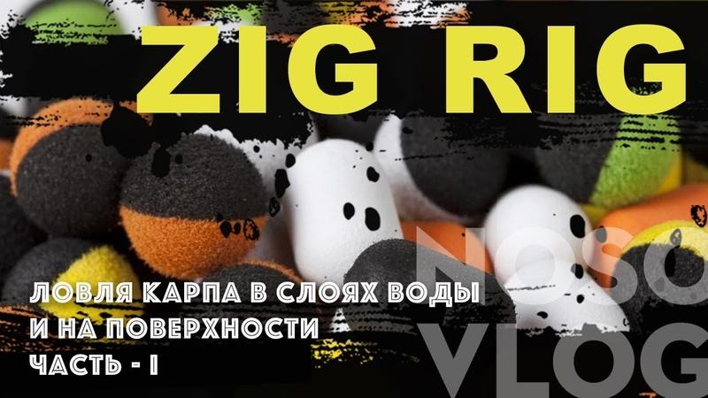 ЛОВЛЯ КАРПА НА ZIG RIG, часть 1