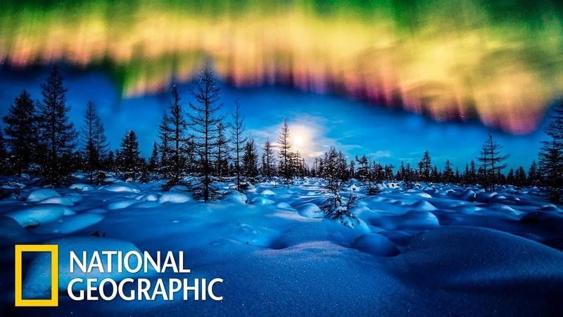 Дикая природа России: Заполярье  (National Geographic)