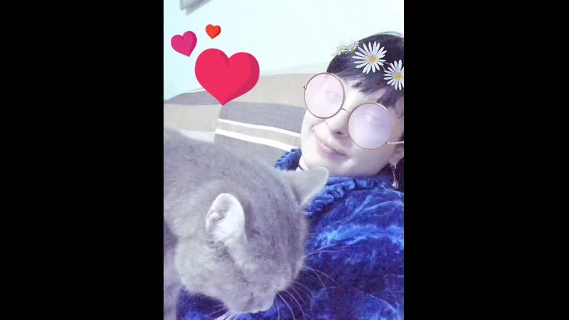 Самый лучший подарок, который дарит нам судьба - это котики, которым мы говорим Благодарю, что Ты есть.