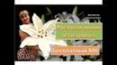 DIY/МК Ростовые цветы. Огромная лилия из изолона. Large lily of isolon