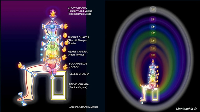 Master Chia in New York City New York: June 17 18 2019 Fusion of the 5 Elements 2 3