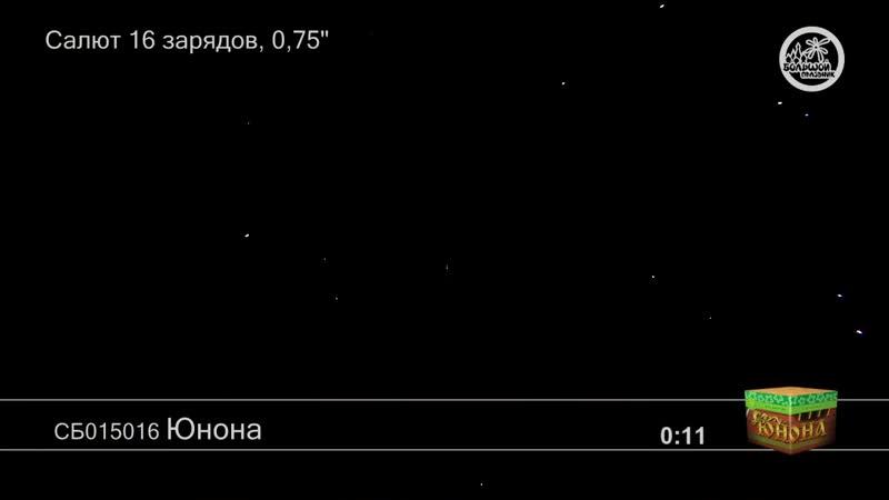 СБ015016 Юнона 24-1