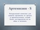Артемизин растительное безопасное противопаразитарное средство Купить Артемизин 063 480 68 74