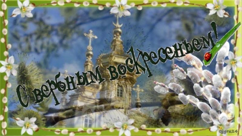 🌿 Поздравление с Вербным воскресеньем 🌿 Видео открытка 🌿