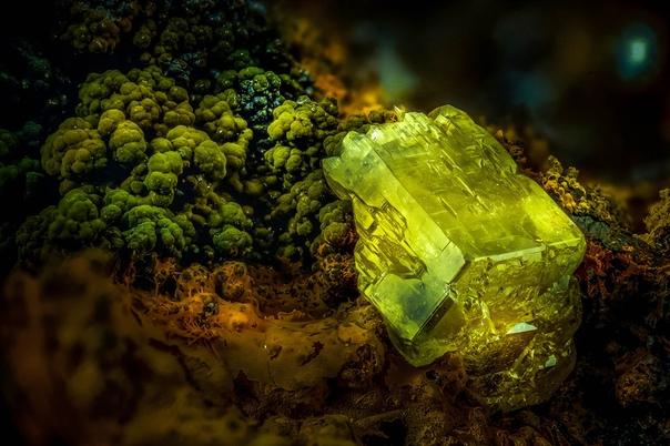 Пироморфит (минерал) под микроскопом