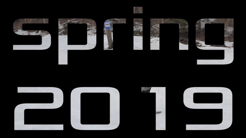Spring 2019 dp (damage park)