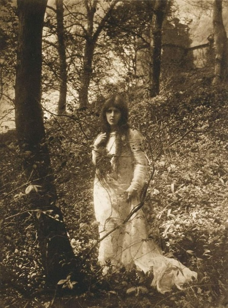 Джеймс Крейг Аннан (1864), почётный член Королевского фотографического общества. Большую часть изображений он создал при помощи процесса фотогравюры. Работы Аннана пронизаны эстетикой 18-го века