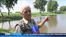 Житель Тюменской области выкопал два пруда на огороде и стал разводить рыбу