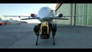 HyQReal robot release Walking robot pulls a plane extended version