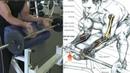 Ejercicios Básicos para desarrollar antebrazos grandes, forearms workout - Fitness Body
