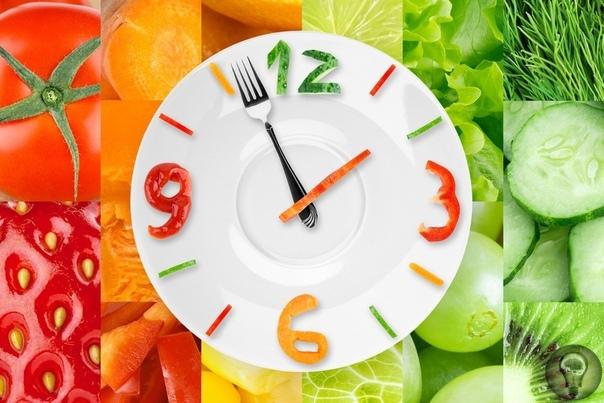 Какого питания стоит придерживаться в летний период