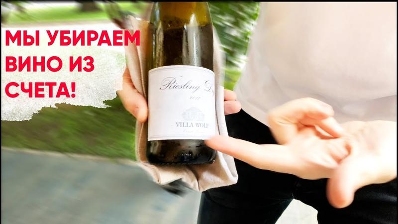 Зачем предлагают ПРОБОВАТЬ вино если от него НЕЛЬЗЯ ОТКАЗАТЬСЯ