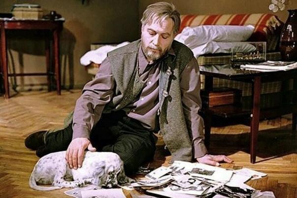 20 , отечественных фильмов, которые номинировались на премию «Оскар». Часть 1. В истории СССР и России было снято 24 фильма и мультфильма, которые номинировались на эту премию. Немного общей