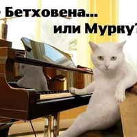 Анкета Vlad Poligraf
