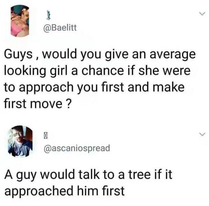 Привет, дерево!
