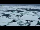 Антарктика Документальный фильм 2 Не предназначена для людей