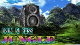 Drum And Bass Reggae Jungle 2018 Ragga Mix ( All New Tunes )