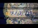 Тропа WAY111 - экстремальный пеший туризм по древнему болоту Ельня