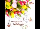 С праздником Весны 🌝🌞🌻🌼🌸💐🌷🌹🥀🌺🌾🐚🍄🍃🎋🎍🍀☘️🌳🌴🌱🌿🐞🦋🐝🕊🦚