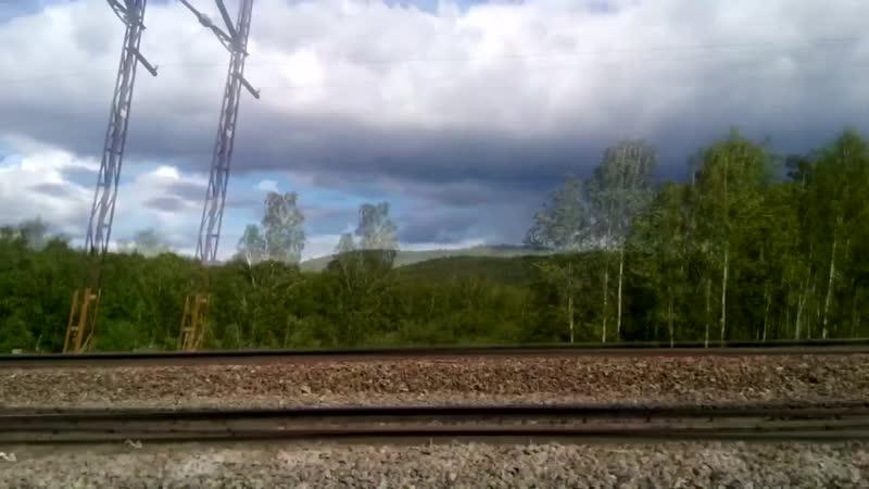 Железная дорога быстрый способ углубиться в лес