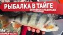 ОКУНИ КАБАНЫ В ТАЕЖНЫХ РУЧЬЯХ С КАЖДОГО ЗАБРОСА Заглохли в глухой Тайге Рыбалка 2019