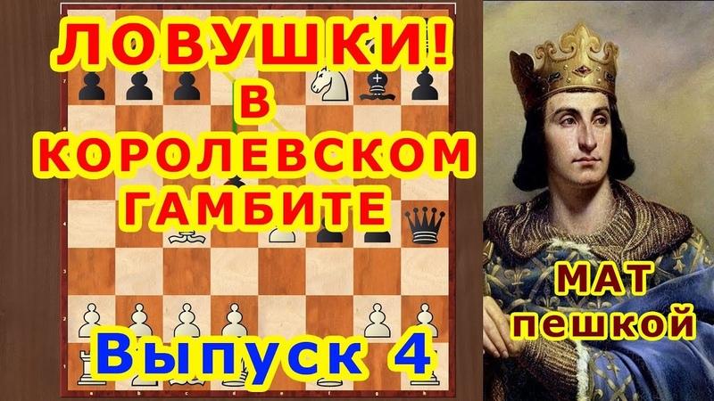 Королевский гамбит 4 ♔ Шахматы и Шахматные Ловушки в дебюте ♕ Мат пешкой