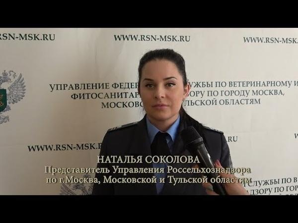 Изъятие и уничтожение 1 2 тонн сыра Перовские базы