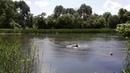 Поездка продолжается вдоль р.Ворона!Природа!Trip 2 continues along the Raven river!Nature!