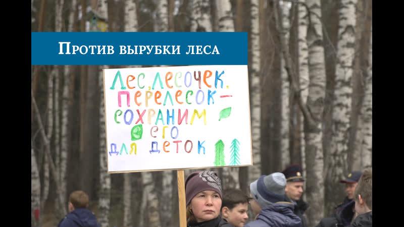Митинг против вырубки леса в Закамске. 20 апреля.