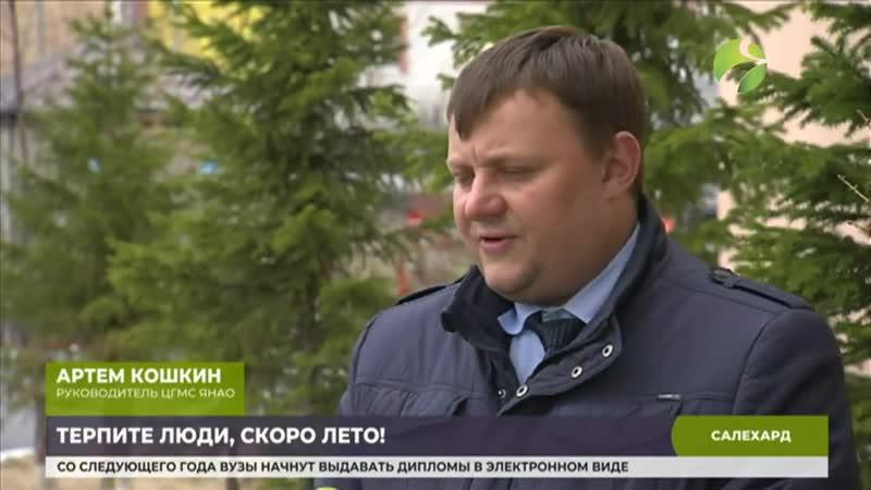 Потепление на Ямале ожидают к началу следующей недели.mp4