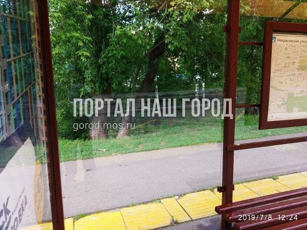 Остановочный павильон «Некрасовская улица» очистили от вандальных надписей по просьбе жителя