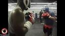Andy Ruiz Jr. VS Evander Holyfield - SPARRING FOOTAGE