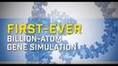 Scientists create first billion atom biomolecular simulation
