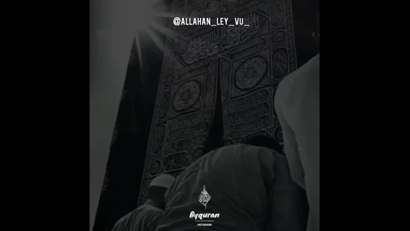 Прошу Аллах1а, чтобы мы дожили до рамадана и оказались среди тех, кому будут прощены грехи в этот месяц и тех кого Всевышний Алл