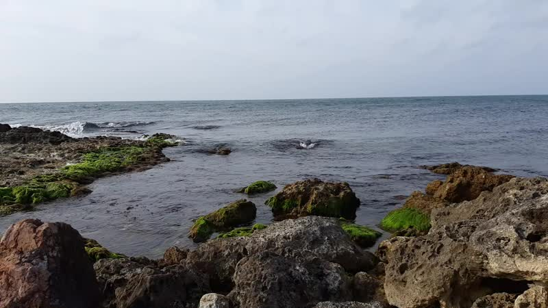 море черное моооре