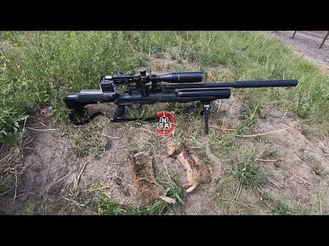 Airgun Slug Hunting