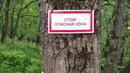 Загадочные пещеры или каменоломни. В 6км от Казначеево или загадочная р.Вашана.