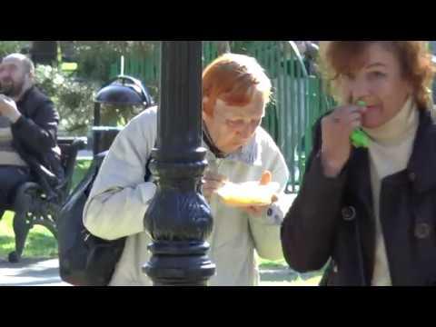 Пища жизни в Сочи в действии