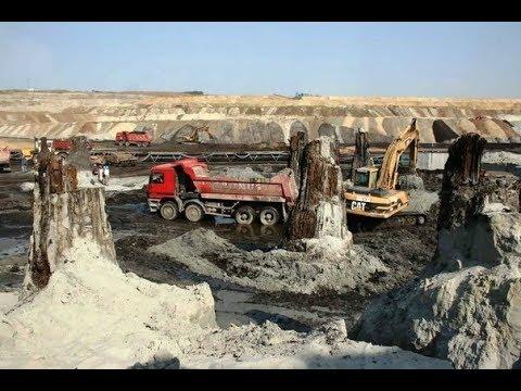 Откопали допотопные кипарисы под 20м.песка и другие странности геологии.