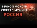 ЖУТЬ РЕЧНОЙ МОНСТР сожрал мужика. РОССИЯ
