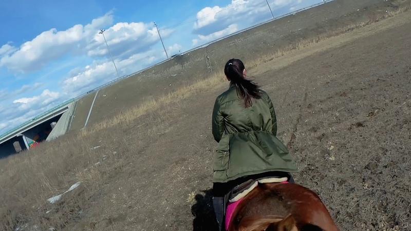 Поехали с Ланой в поля