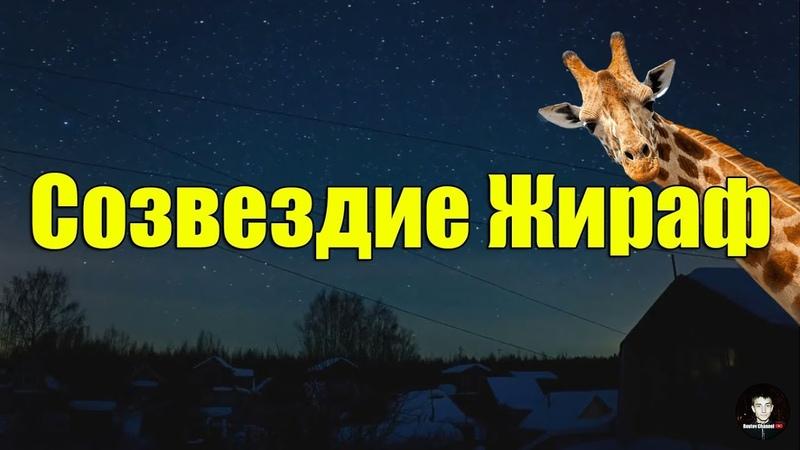 Созвездие Жираф | Как найти на небе | Факты о созвездии (Reutov Channel)